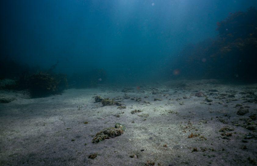 Feltérképezték az óceánok mélyének egyötödét