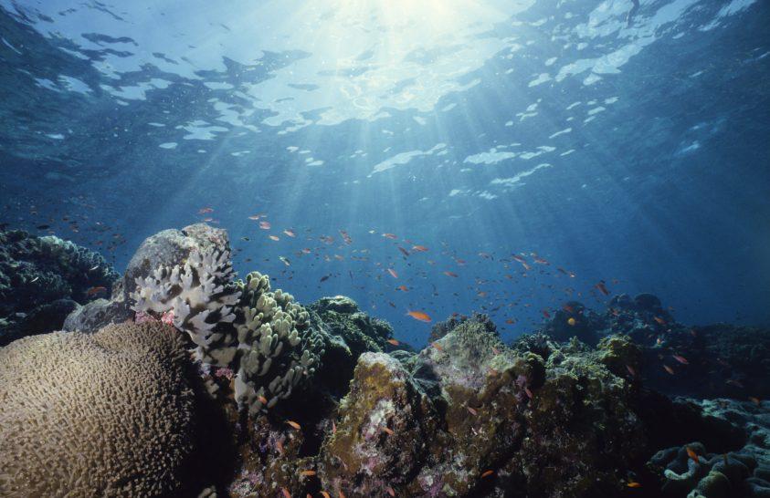 Sosem voltak ilyen fontosak az óceánok