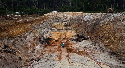 Az aranybányászat korlátozza az amazóniai erdő megújulóképességét