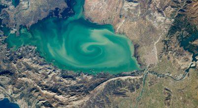 Csigaminta a Shkodrai-tó vizén