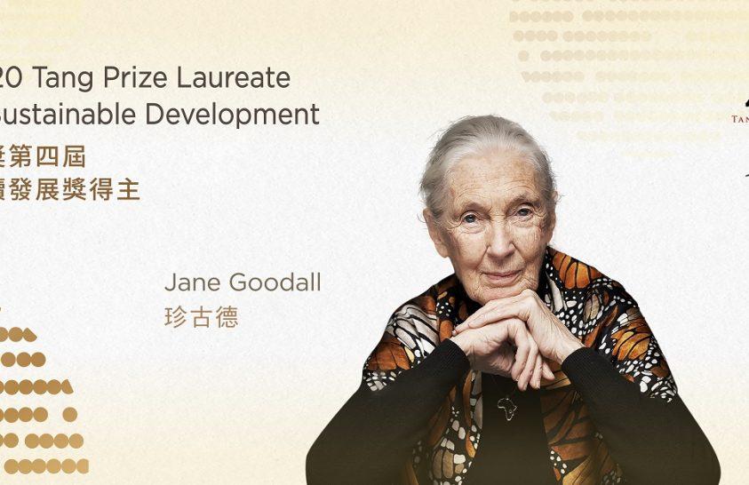 Különleges elismerésben részesült Jane Goodall