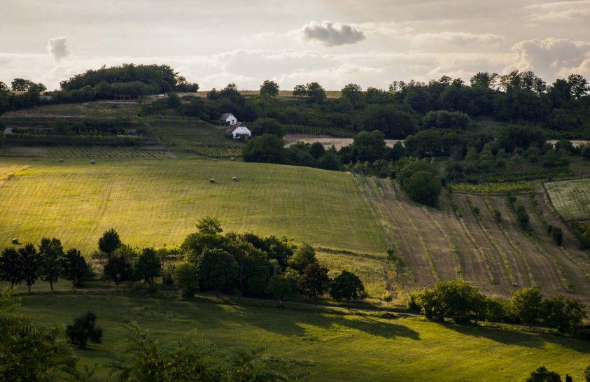 A nap képe: Fények sétája a dombon