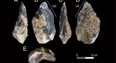 1,4 millió éves csontbaltát találtak Kelet-Afrikában
