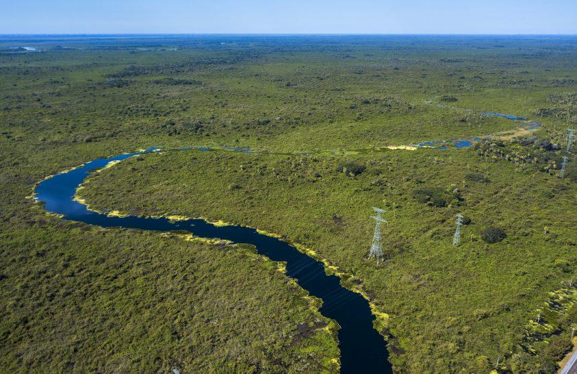 Sok az erdőtűz a világ legnagyobb trópusi mocsárvilágában