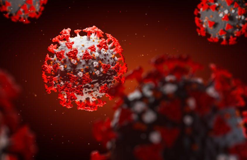 Kutatók feltárták a SARS-CoV-2 evolúciós történetét