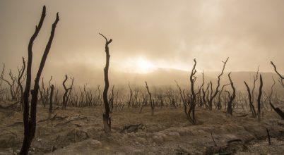 Egyre távolabb a párizsi klímaegyezmény célja