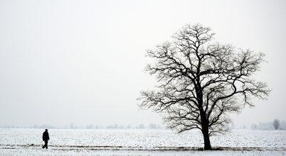 A nap képe: Hideg van