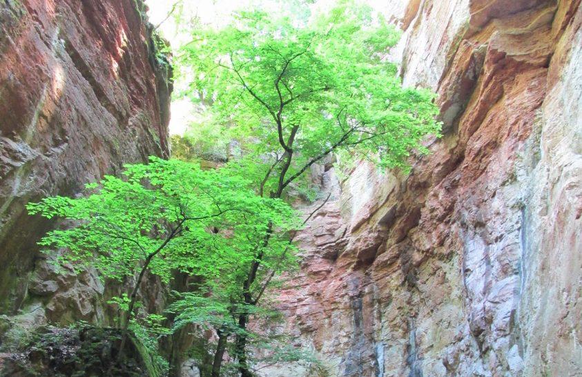 Élménytúra a Gerecse védett bányáiban