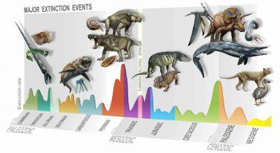 Kihalási esemény nyitott utat a dinók uralmának