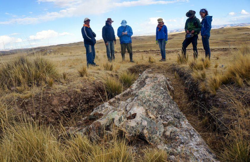Drámai környezetváltozásról tanúskodnak az Andok növényi kövületei