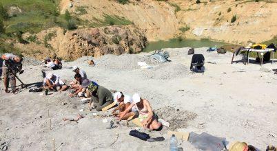 A Bakony területén 85 millió éve dinoszauruszok fészkelhettek