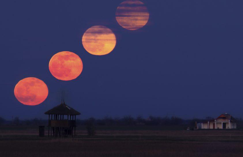 A nap képe: Holdkelte a pusztán