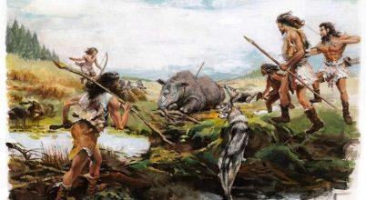 Orrszarvúak éltek egykor a Tibeti-fennsíkon