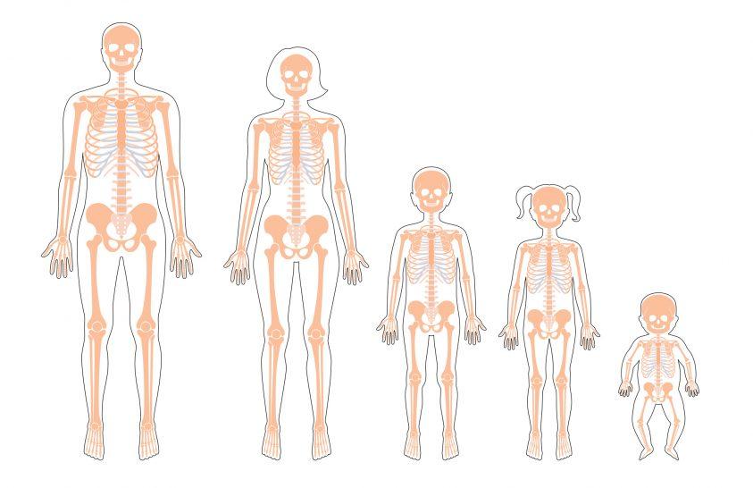 Egy ideális napi időbeosztás a csontok egészségéért