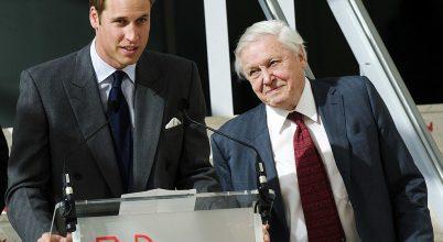 """Vilmos herceg és Sir David Attenborough """"környezetvédelmi Nobel-díjat"""" alapított"""