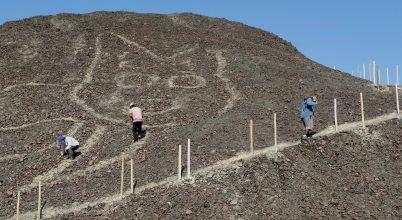 Macskát ábrázoló Nazca-vonalat találtak