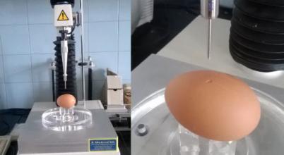 Tejhelyettesítő termék tojásból