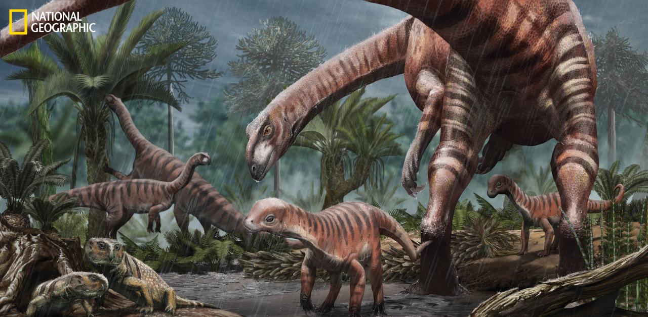 Újragondolt dinoszauruszok