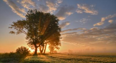 A nap képe: Amikor a nap felkél….