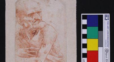 Felmérték da Vinci rajzainak mikrobiomját