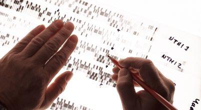 Az életkorunkról valló gének