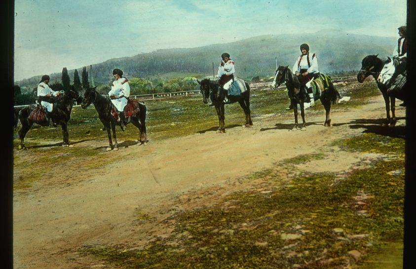 A Kárpátok kicsi, de szívós lovai