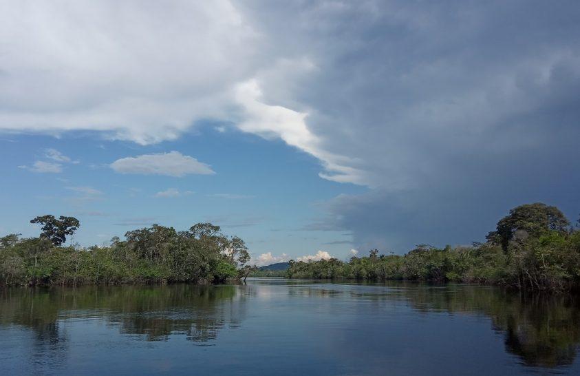 Egyre kevesebb szenet fog raktározni Amazónia