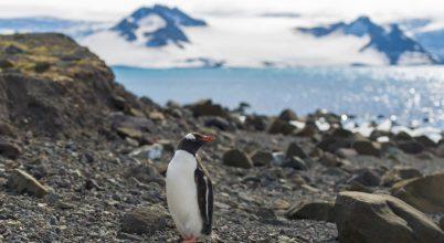 Brit szakemberekről nevezik el az Antarktisz hegyeit és gleccsereit
