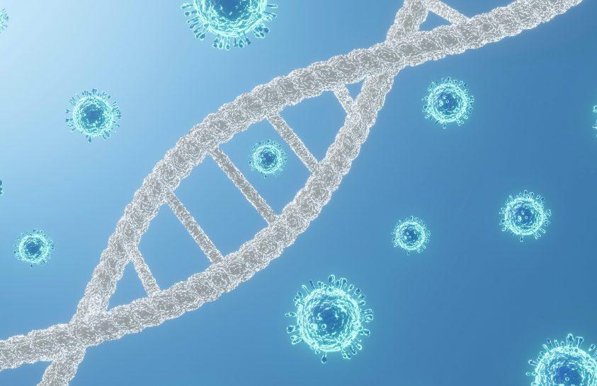 Magyarországi koronavírus-változatok genetikai feltérképezését végezték el a kutatók