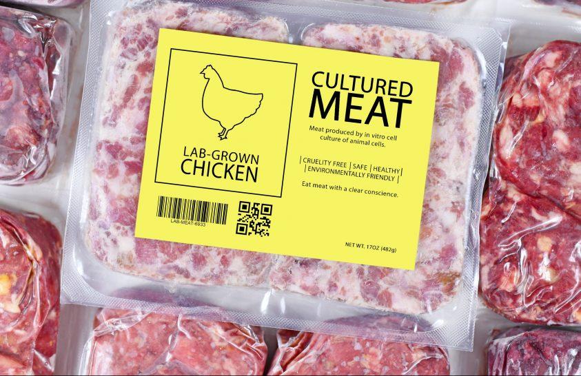 Laboratóriumban előállított csirkehús