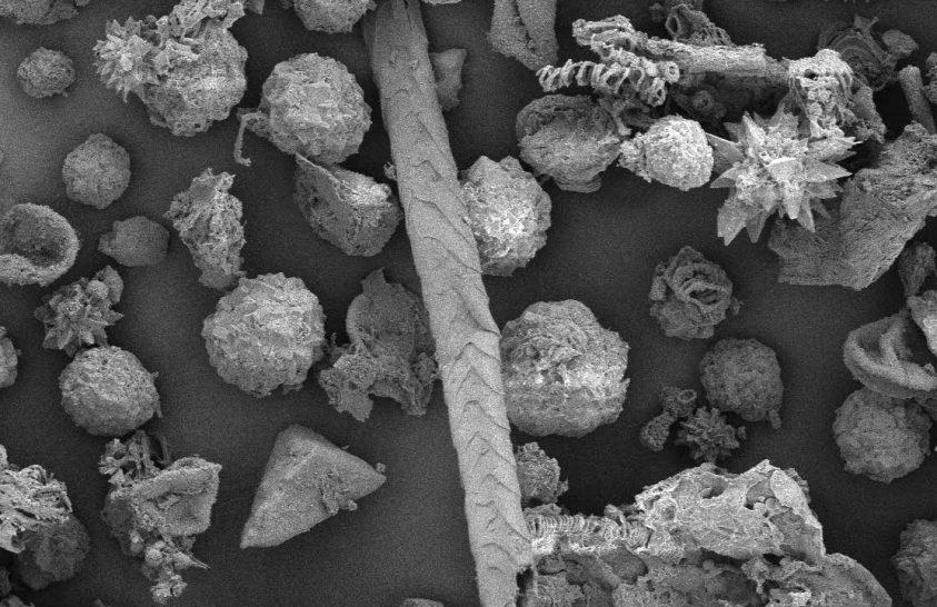 A betegápolásról árulkodnak az ősi amerikai múmiák