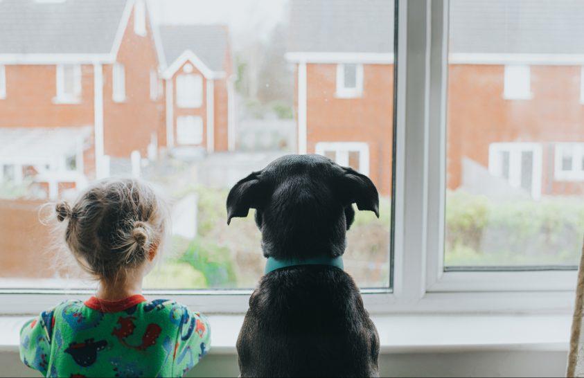 A kutyák a gyerekekkel is összehangolják viselkedésüket