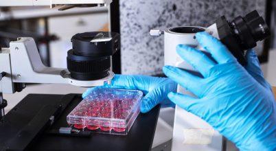 Gátolja a koronavírus fertőzőképességét a magyar készítmény