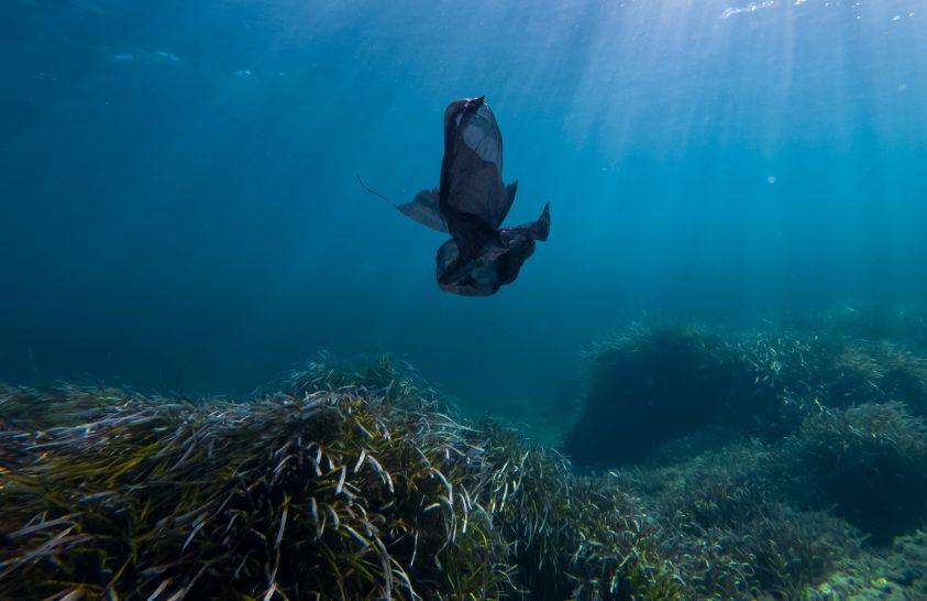 Sok műanyagtöredéket szűrnek ki a Földközi-tengerből a tengeri füvek