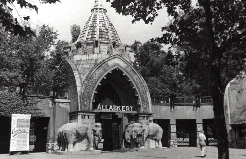 Népszámlálás volt a budapesti állatkertben