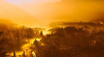 A természet károsításával magunkat is veszélybe sodorjuk