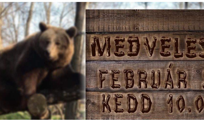 A szegedi medvék szerint közeledik a tavasz
