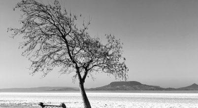 A nap képe: Balaton minimál