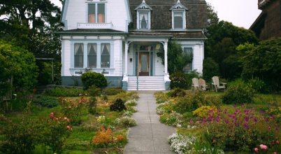 Városi kertek a beporzók titkos éléskamrái