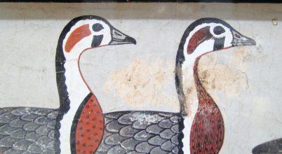 Kihalt lúdfajt azonosítottak egy 4600 éves egyiptomi falfestményen