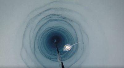 Meglepő helyen, egy jégself mélyén találtak állatokat