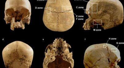 Ott bukkantak egy koponyára, ahol még nem is járhatott ember