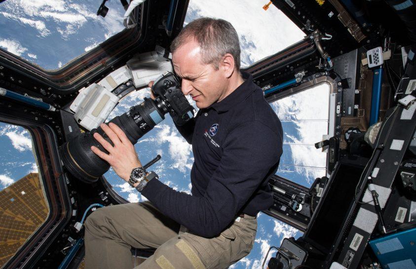 Az űrből vizsgálják a madarak vándorlását