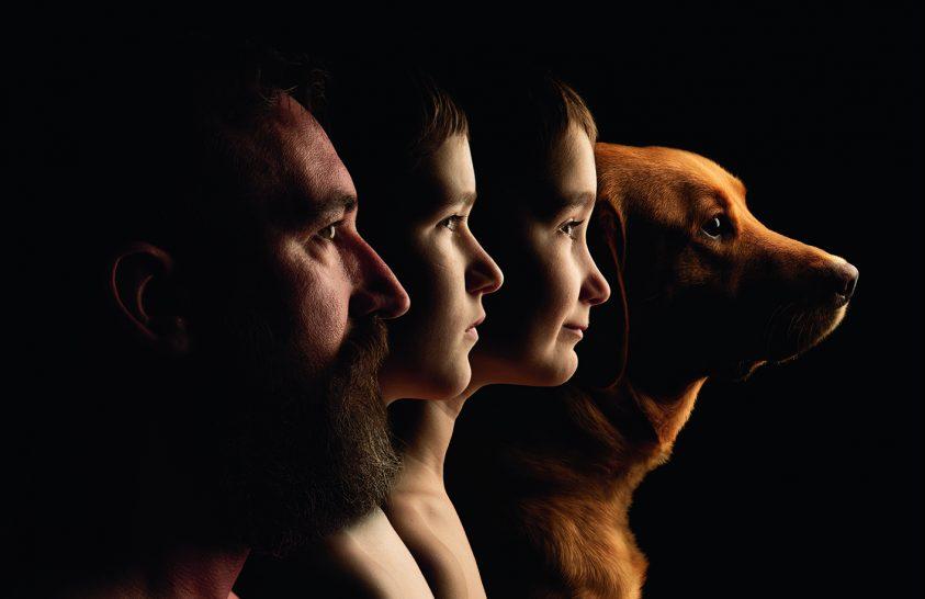 National Geographic kutyasegély-akció
