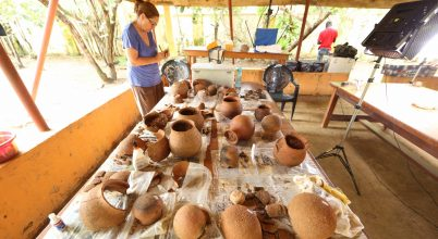 A méz nyomait azonosították ősi edényekben