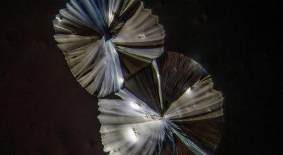 Cukor kristály