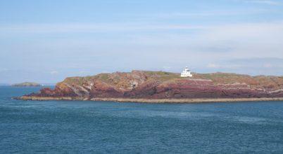 Nyulak ástak ki ősi leleteket egy szigeten