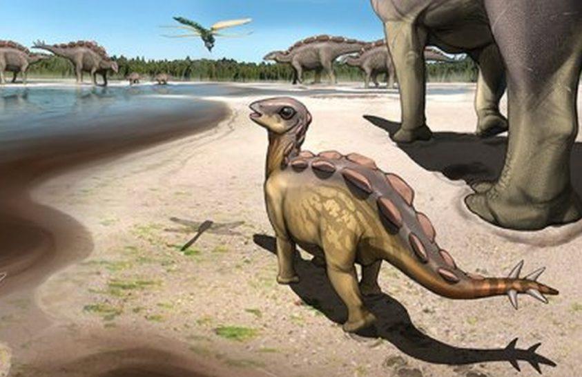 Macska méretű sztegoszaurusz-féle élt 100 millió éve