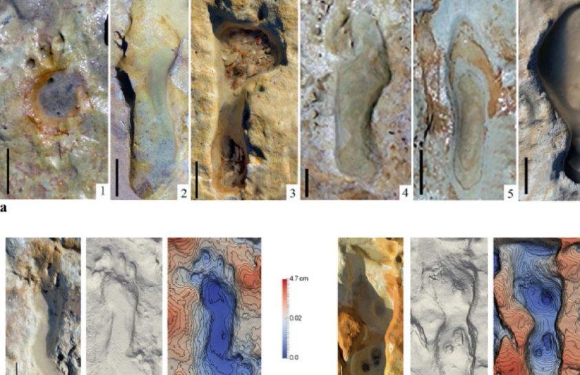 Játszó neandervölgyi gyerekek nyomaira bukkantak