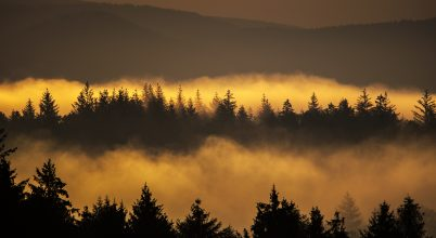 A nap képe: Reggeli fények